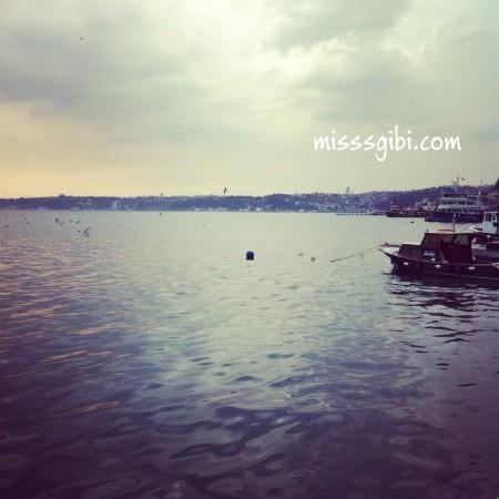 limanda balık manzara